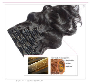 "16""-26"" Clip in Wave 100% Remi Hair Extension pictures & photos"