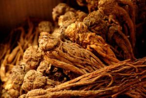 Angelica Root Oil Extracted by CO2 pictures & photos