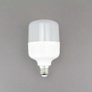 LED Global Bulbs LED Light Bulb 13W Lgl3107 pictures & photos