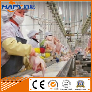 China Economical Chicken Slaughter Line pictures & photos