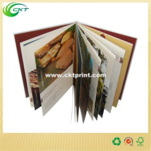 Sewing Binding Hardcover Book Printing, Offset Printing Services (CKT-BK-738) pictures & photos