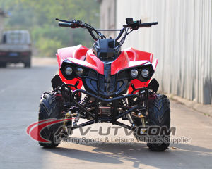 Best Selling 48V Electric ATV Quad with High Quality pictures & photos