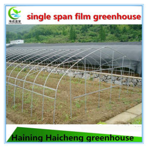 The Cheapest Agriculture Steel Green House pictures & photos