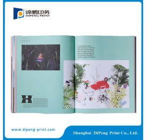 Best Price for Wire Binding Book Printing pictures & photos