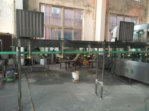 SGS Ce Cgf18-18-6 Washing Filling Capping 3-in-1 Unit pictures & photos