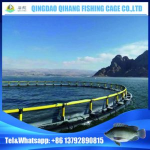 HDPE Sea Fish Farming Cage for Aquaculture pictures & photos