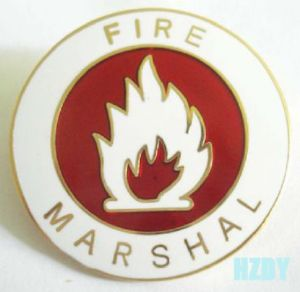 High Quality Real Gold Plating Metal Badges pictures & photos