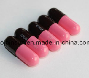 Ysz-B Filled Capsule Soft Capsule Round Tablet Printing Sublimation Equipment pictures & photos