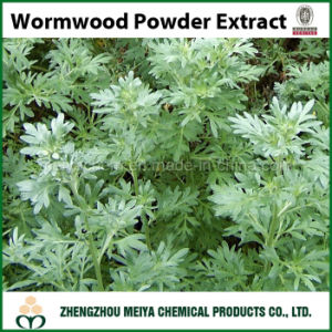 Superior China Ingredient Sweet Wormwood Powder Extract with Artemisinine 5%-98% pictures & photos