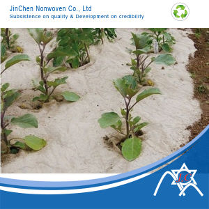 PP Nonwoven Fabric for Agriculture Vegetable Cover pictures & photos