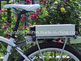 High Quality Lithium Battery and Carrier for Electric Bike pictures & photos