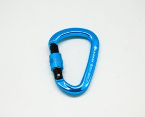 D-Shaped Screwlock Outdoor Gear Rock Climbing Safety Carabiner pictures & photos