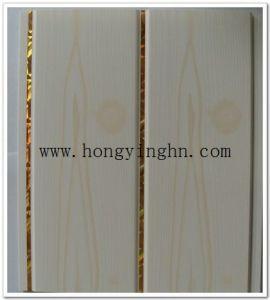 PVC Panels - 48 pictures & photos
