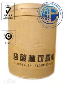CAS 21462-39-5 Lincomycin Hydrochloride, Clindamycin Hydrochloride & Clindamycin Phosphate 24729-96-2 pictures & photos