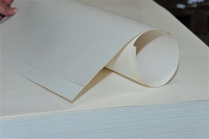 White Kraft Paper pictures & photos