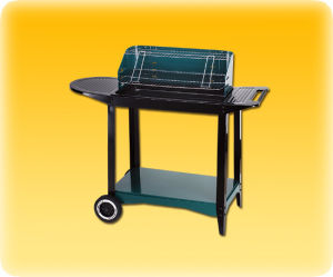 Charcoal Grill (6013)
