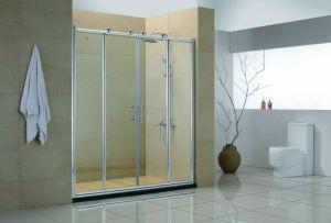 Bypass Shower Door (RSH-D-572-15)