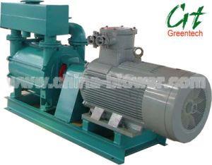 Water Ring Vacuum Pump (2BE1) / Liquid Ring Vacuum Pump pictures & photos