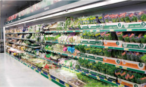 Advanced Fruit and Vegetable Multideck Showcase pictures & photos