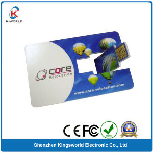 Rotating Plastic Card USB 2.0 pictures & photos