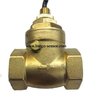 Baffle Flow Switch in Brass Material pictures & photos