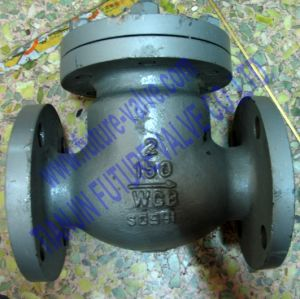 ANSI 150 2 Inch Cast Steel Swing Type Check Valve (H41H-125/150C)