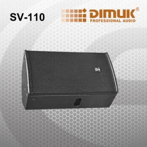 10 Inch Commecial Professinal Speaker (Sv-110)
