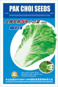 Jin Pai No. 5 Cabbage Seeds (455)
