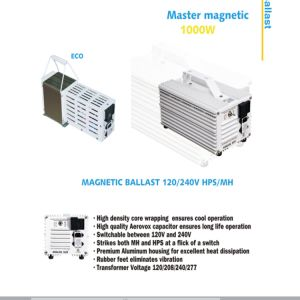 High Quality Grow Light HID Magnetic Ballas pictures & photos