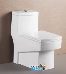 Sanitary Ware Washdown One Piece Toilet with Slow Down Seat Cover for Rest Room (839)