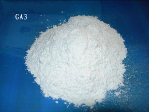 Plant Growth Regulator of Gibberellic Acid GA3 10%, 20% Tablet pictures & photos