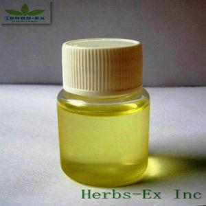 Terpeneless Ginger Oil