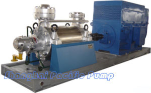 Boiler Feed Pump (D/DG) pictures & photos