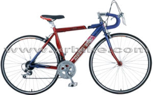 High-Quality Racing Bikes (XR-R2602)