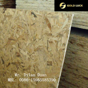 Decorative OSB (oriented strand board) pictures & photos