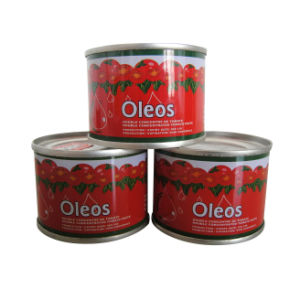 High Quality Canned Tomato Paste 18/20%. 22/24%, 28/30%