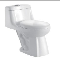 Sanitary Ware Ceramic Bathroom Flush Toilet Jet-Siphonic One Piece Toilet Bowl (WCT8H)