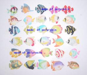 Polyresin Fish Magnet, Fish Fridge Magnet pictures & photos