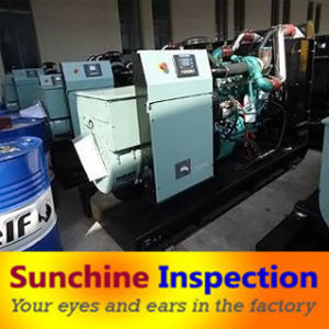Diesel Generator Pre-Shipment Inspection / Quality Control and Testing Services pictures & photos