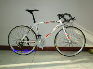 Hot Sale Sports Road Bikes, Track Bicycles (FP-RB-10) pictures & photos