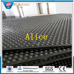 Cow Rubber Mat/Rubber Stable Mat/Animal Rubber Mat pictures & photos