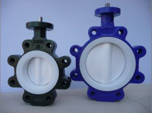 Bare Stem Lugger Type Butterfly Valve pictures & photos