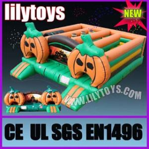 Large Inflatable Fun City (lilytoys-Funcity-3151) pictures & photos