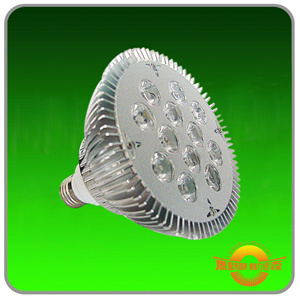 LED Light Source PAR38  (9W12W)