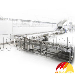 Poultry Slaughterhouse Using Roller Conveyor pictures & photos