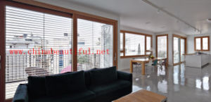 Roller Shutter (pH-011) pictures & photos