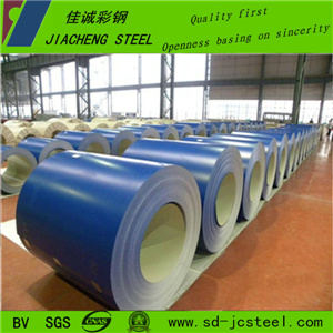 Color Steel Coils/Sheet in Coils with Low Cost