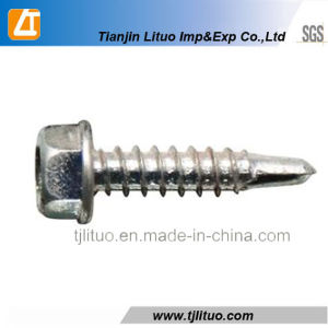 Hexagon Head Self Drilling Screws with Bonded Washers pictures & photos