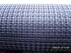 PP Biaxial Reinforcement Geogrid for Construction pictures & photos
