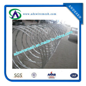 Galvanized & Ss Razor Barbed Wire pictures & photos
